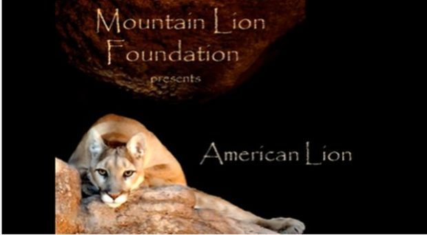 Saving America's Lion – appeal